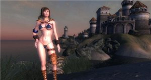 скачать игру бесплатно TESIV : Oblivion Colourwheels Sexy Stock Armor and Clothing Replacer v2_2